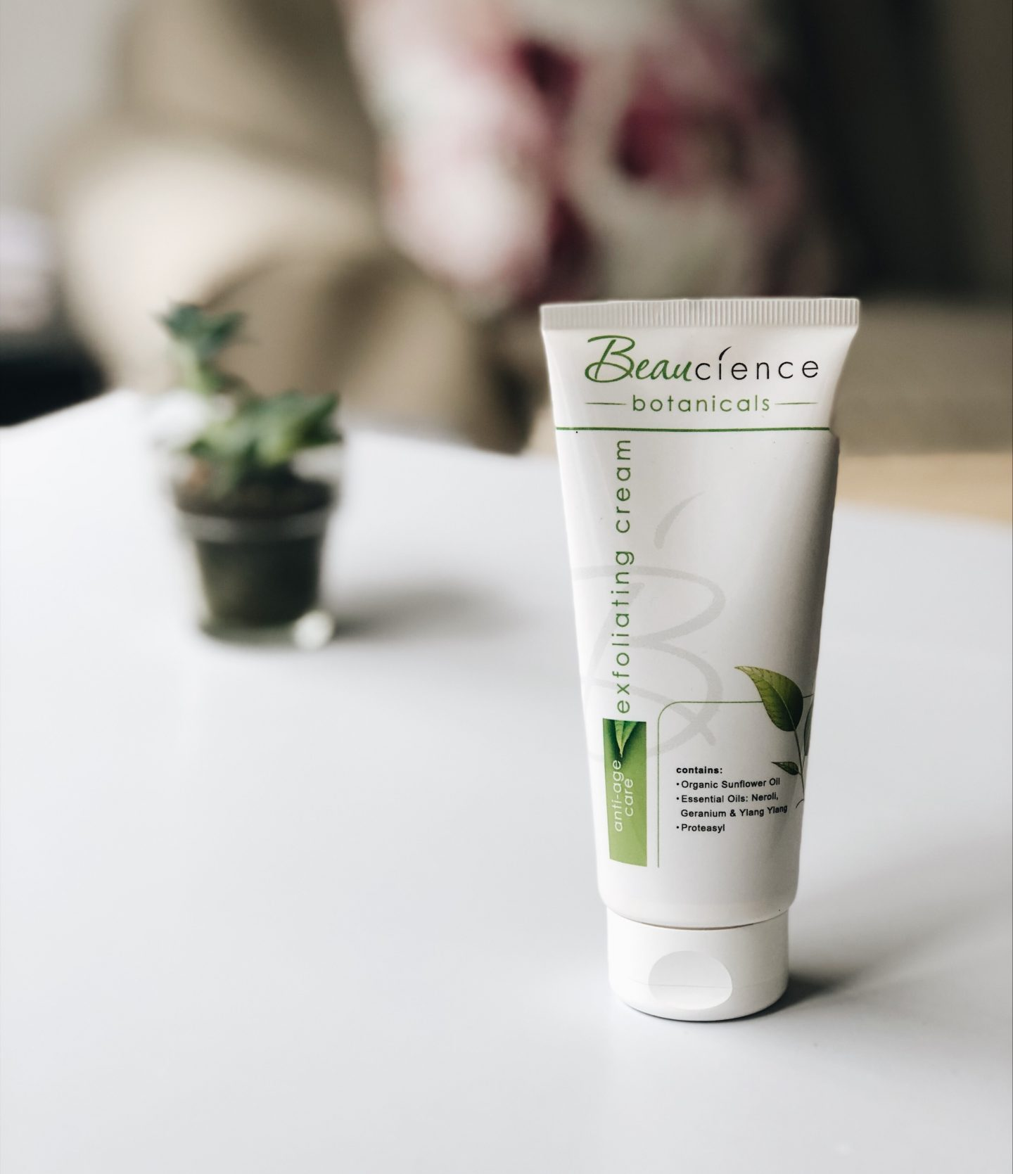 Affordable beauty products south africa topknotch blog beaucience botanical exfoliating cream